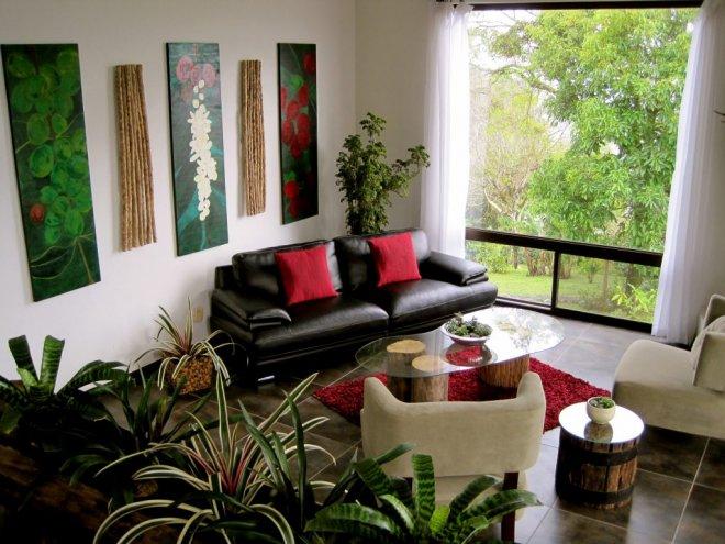 https://assets.roar.media/Bangla/2017/02/Plants-Indoor-1024x768.jpg