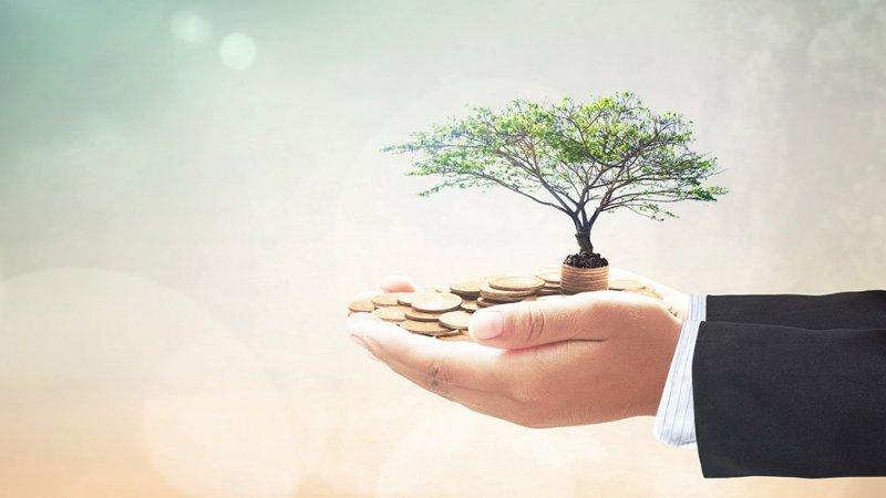 https://assets.roar.media/Bangla/2017/06/HSA-invest-031717-shutter.jpg