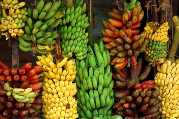 Banana Nation: Your Comprehensive Guide To Sri Lankan Bananas