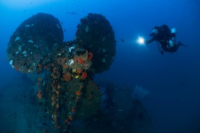 Wreck of the HMS Hermes, which sank in 1942. Image credit: Pete Mesley/xray-mag.com