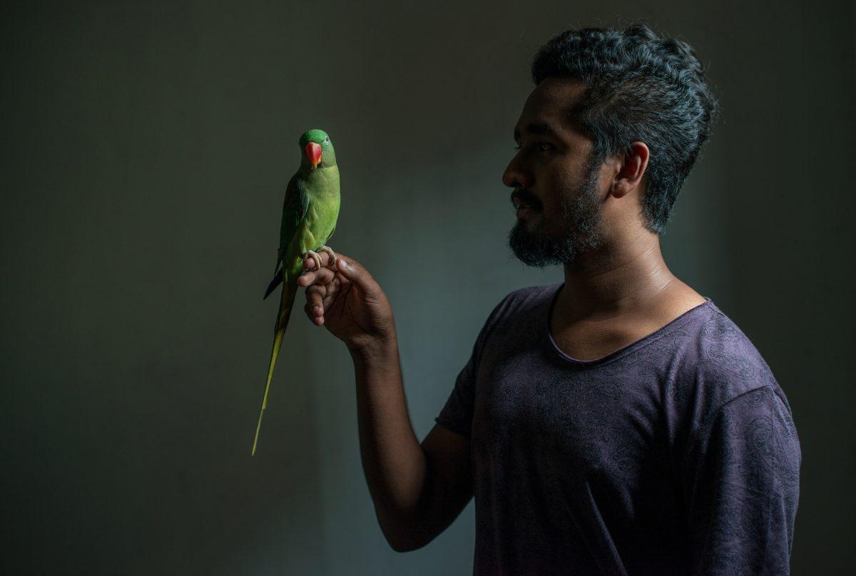 Firi and Cheeku, a very photogenic bird, pose for a portrait. Image credit: Roar.lk/Christian Hutter