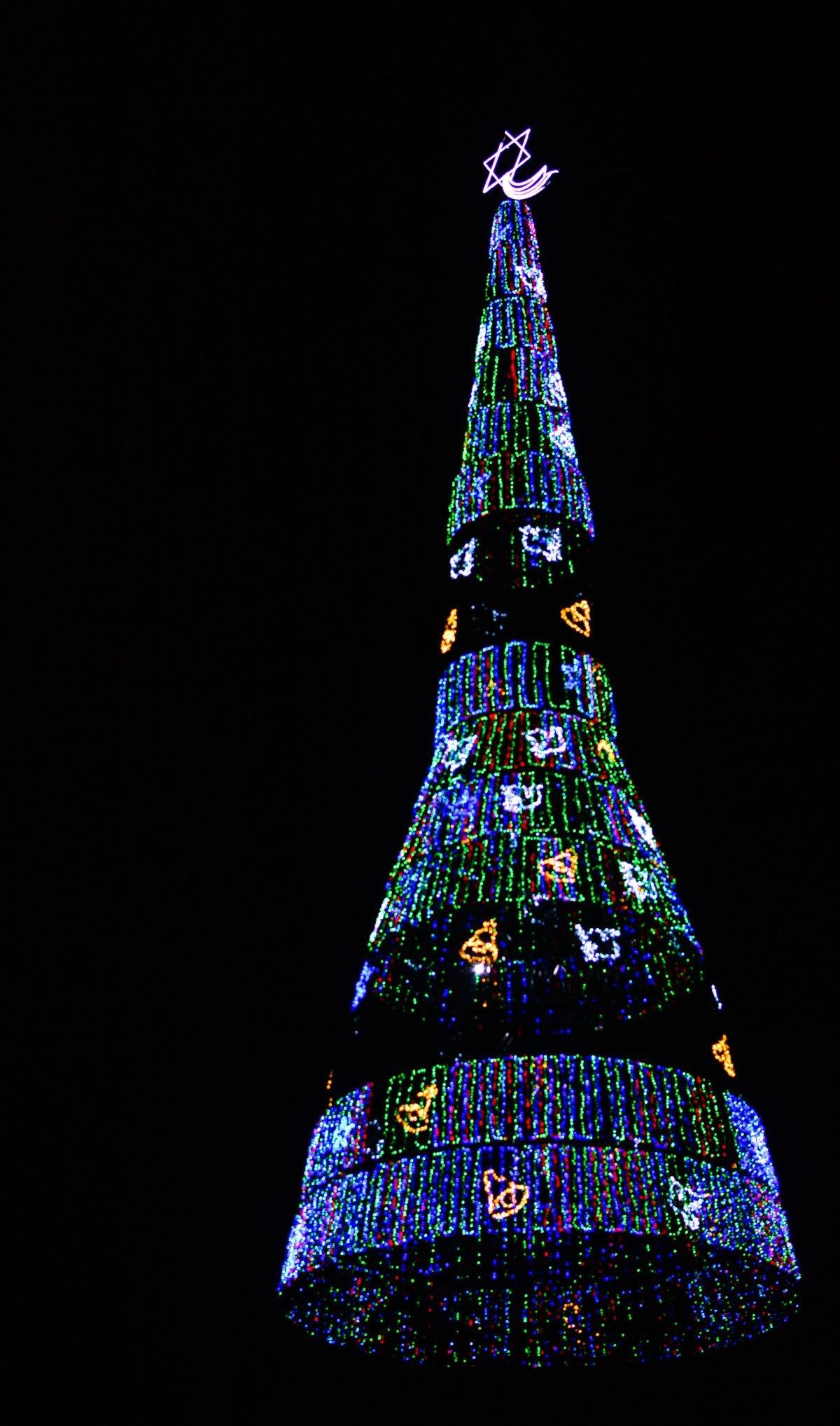 The world's tallest Christmas tree in all its current glory. Image courtesy: Thiva Arunagirinathan / Roar.lk