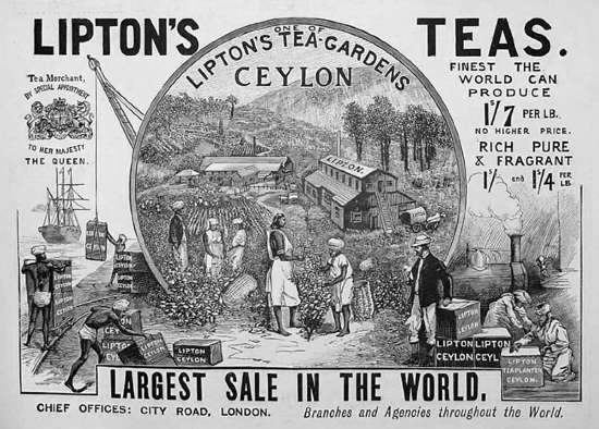 An 1896 advertisement for Lipton Teas, which made Ceylon Tea popular in the US and the UK