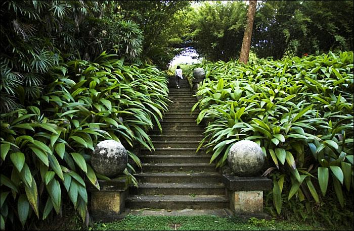 https://assets.roar.media/Life/2017/09/Cover-Image-The-Brief-Garden.jpg
