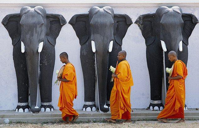 https://assets.roar.media/Sinhala/2016/09/22c.jpg