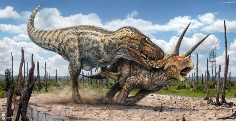 https://assets.roar.media/Sinhala/2018/03/t_rex_vs_triceratops_by_swordlord3d-d9bd8h3.jpg