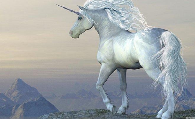 https://assets.roar.media/assets/M3GtBk8H1TarPCgp_Unicorn.jpg