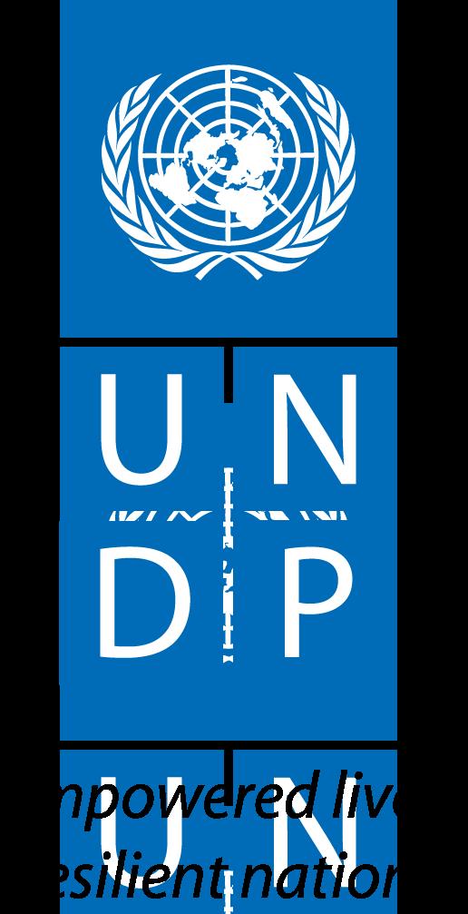 https://assets.roar.media/assets/TygdOHTdkXNGk6NS_UNDP_Logo_Black-Text.png