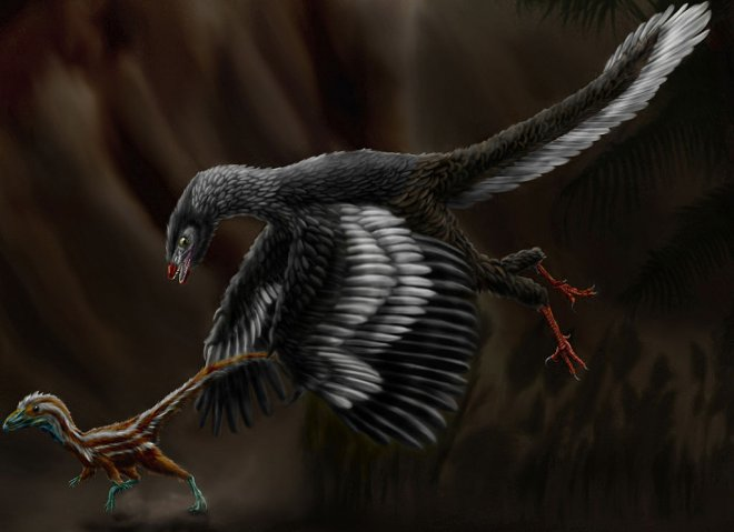 https://assets.roar.media/assets/X6yBDEf19fF9uvEu_1024px-Archaeopteryx_lithographica_by_durbed.jpg