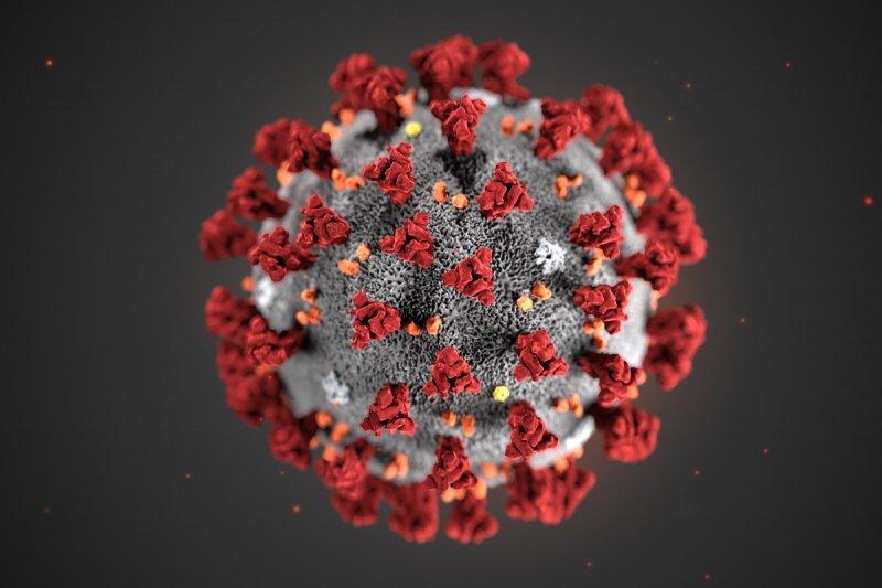 https://assets.roar.media/assets/a3C3lynpZQDeEdkK_coronavirus_CDCx.jpg