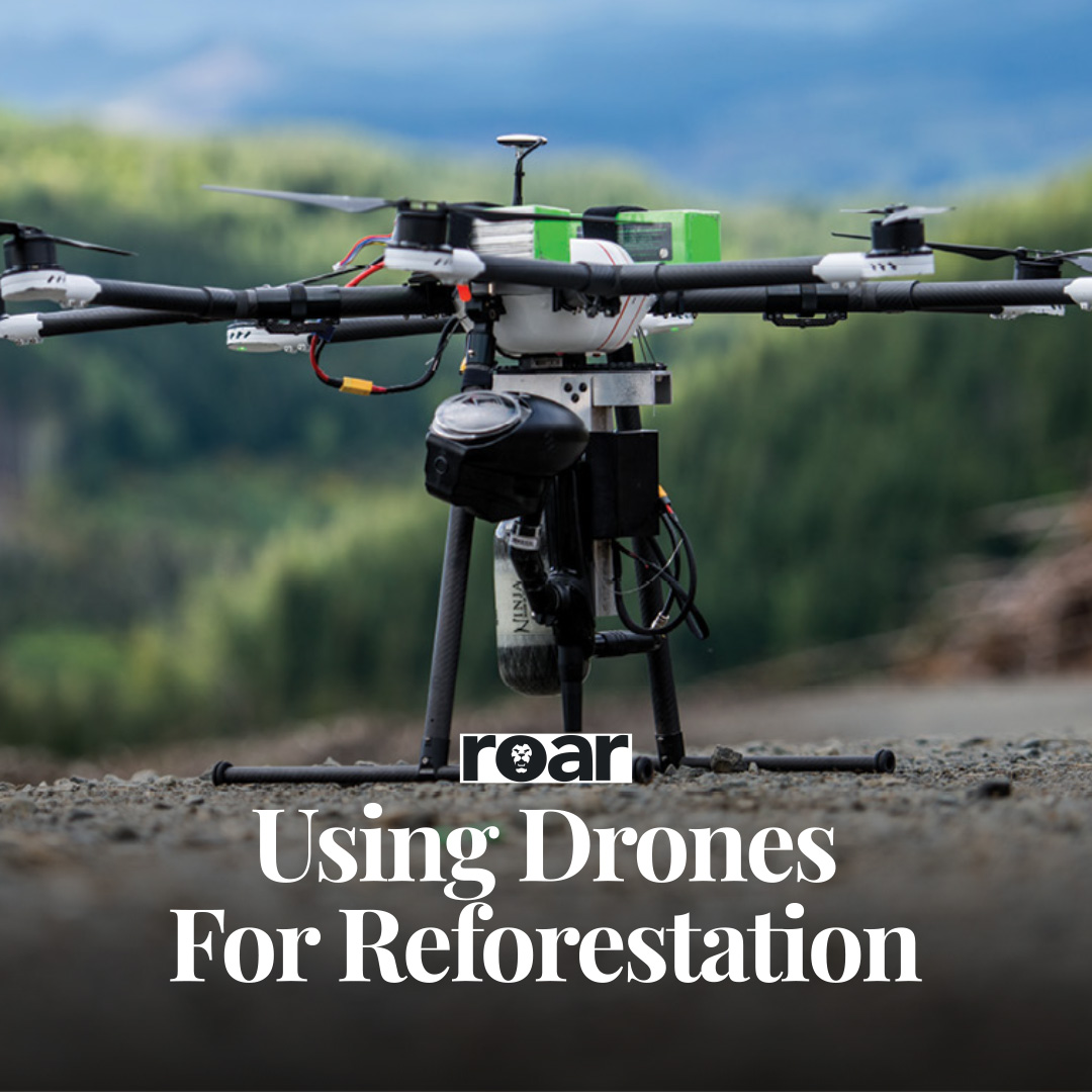 Using Drones For Reforestation