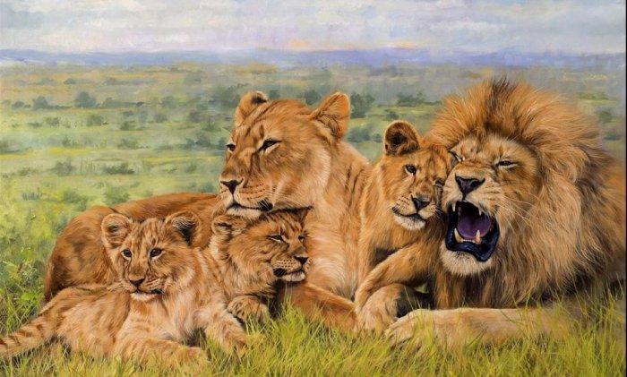 সিংহের একটি দল বা প্রাইড ( source: wikimedia commons)