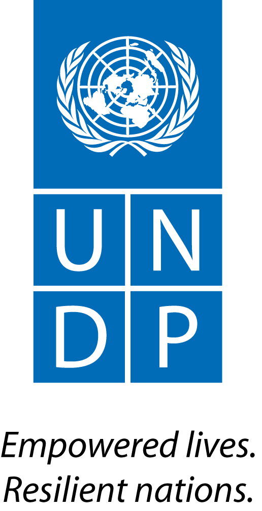 https://assets.roar.media/assets/qwthPEF8H50BvArw_UNDP_Logo_Black-Text.png